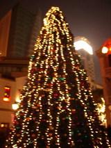 新天地クリスマスツリー