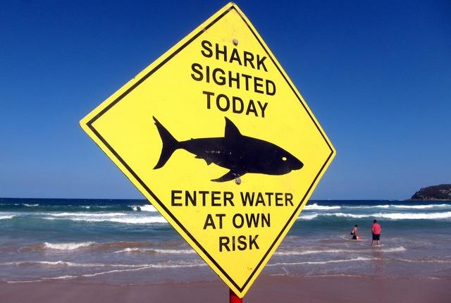 shark-warning-australia