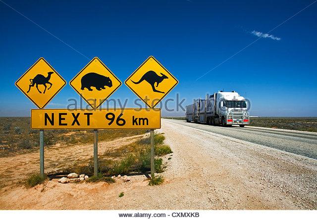 wildlife-raod-sign-at-eyre-highway-cxmxkb