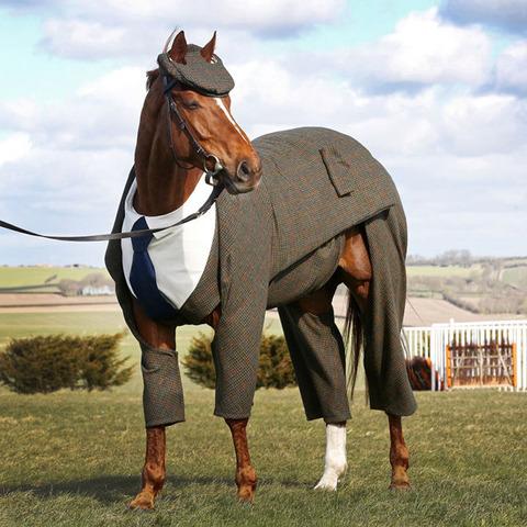 horse-suit2