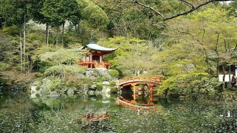 daigoji spring