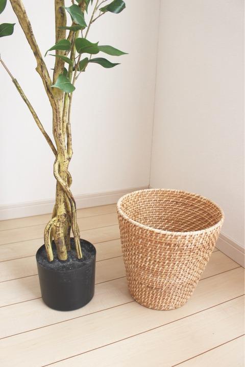 ニトリ フィカス150㎝ 鉢カバーにぴったり ダストボックス