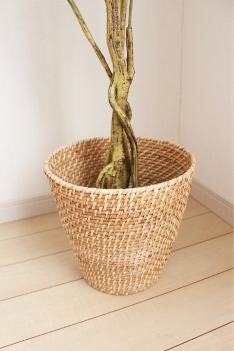 ニトリ フィカス150㎝ 鉢カバー ダストボックス シンプル