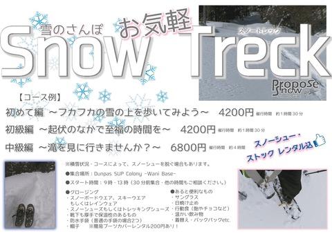 Snow Treck POP