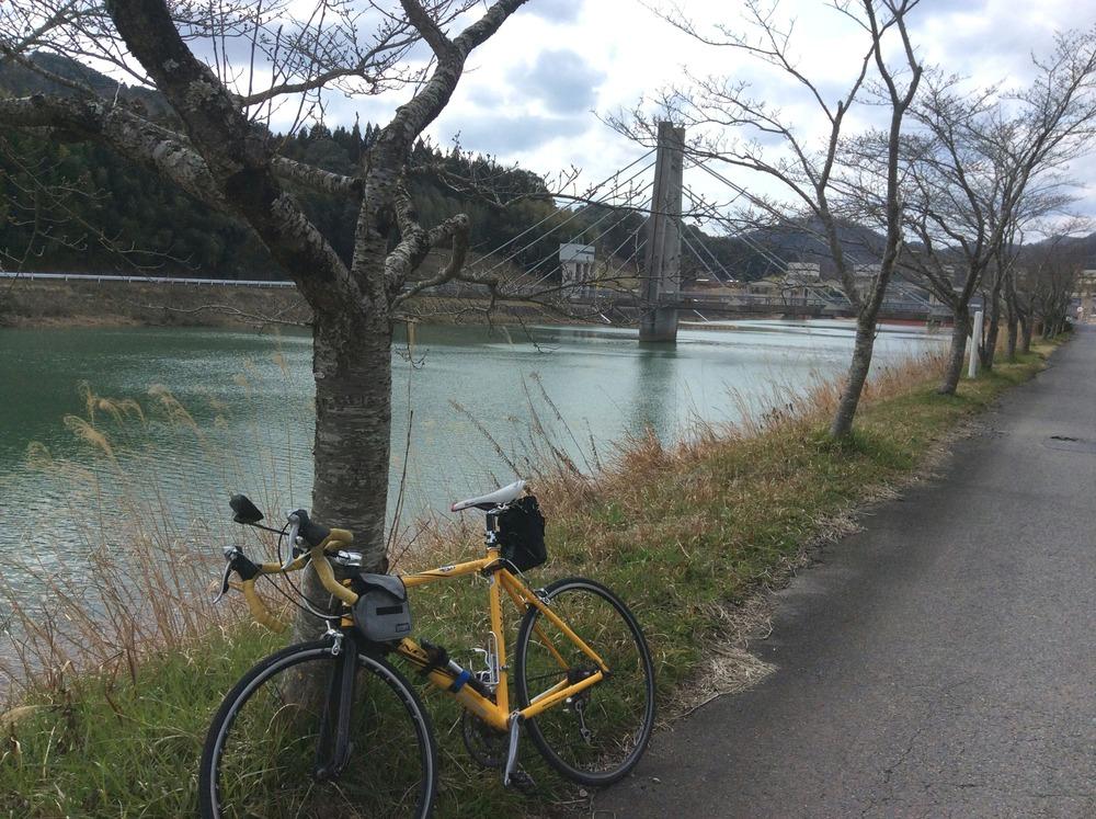 篠山川沿いの道