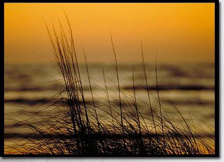 秋の海の夕暮れ