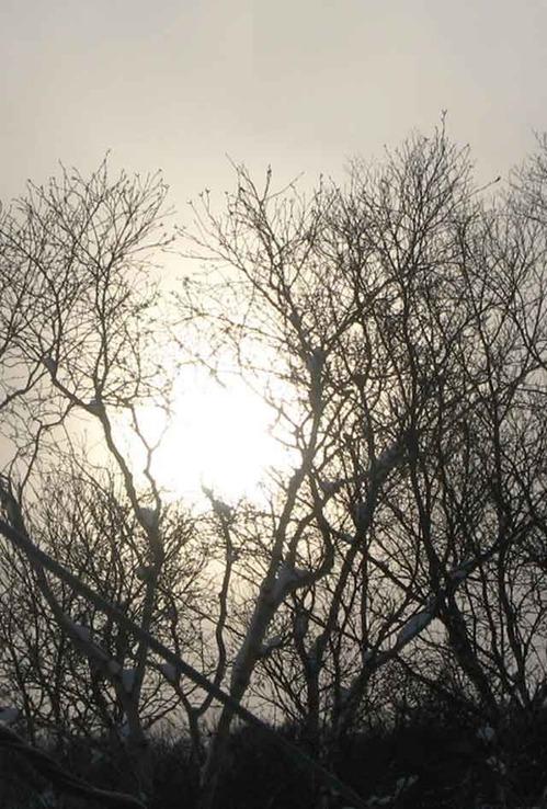 02_sunrise02