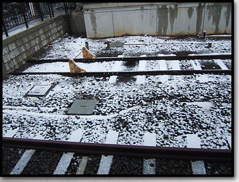 小樽駅初雪