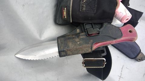 ホルスターに山菜ナイフ