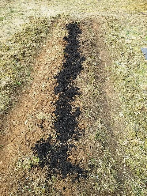20160330_06腐葉土を撒いて