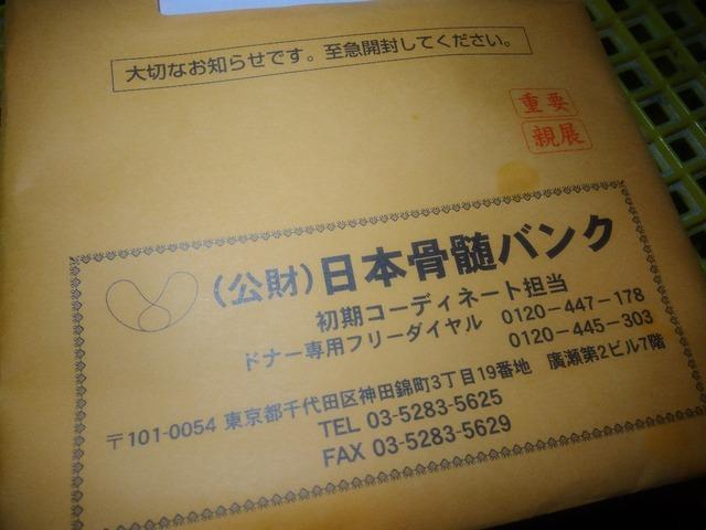 P_20201123_202251_copy_1152x864