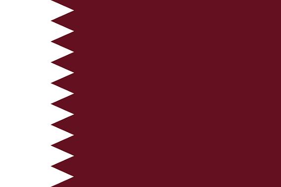 カタールって一度もW杯に出場せずに開催国になるとか、史上初だろ