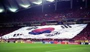 日本人が韓国を嫌いになった原因って日韓ワールドカップだよな