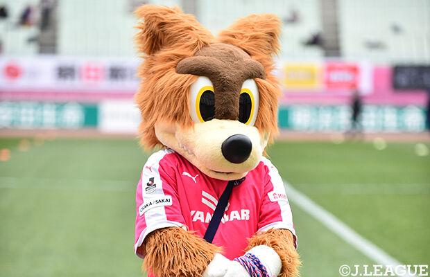 《J1第30節》⑪セレッソ大阪×⑦鹿島アントラーズ 結果。ACL出場権獲得に望みをつなぐ逆転劇