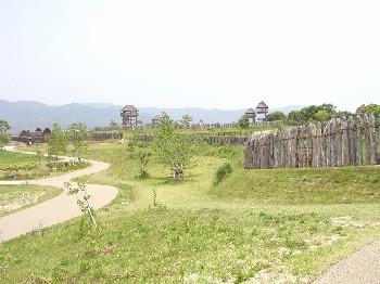 yosino1