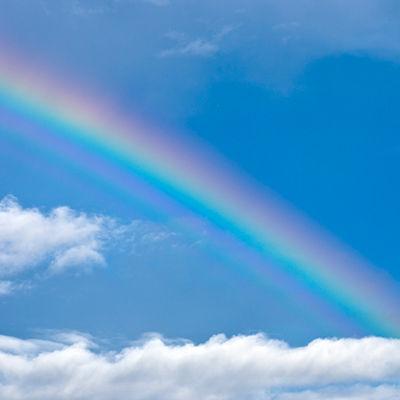 雨上がりの虹に向かって