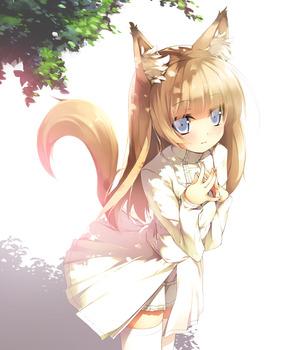 猫目 pic8