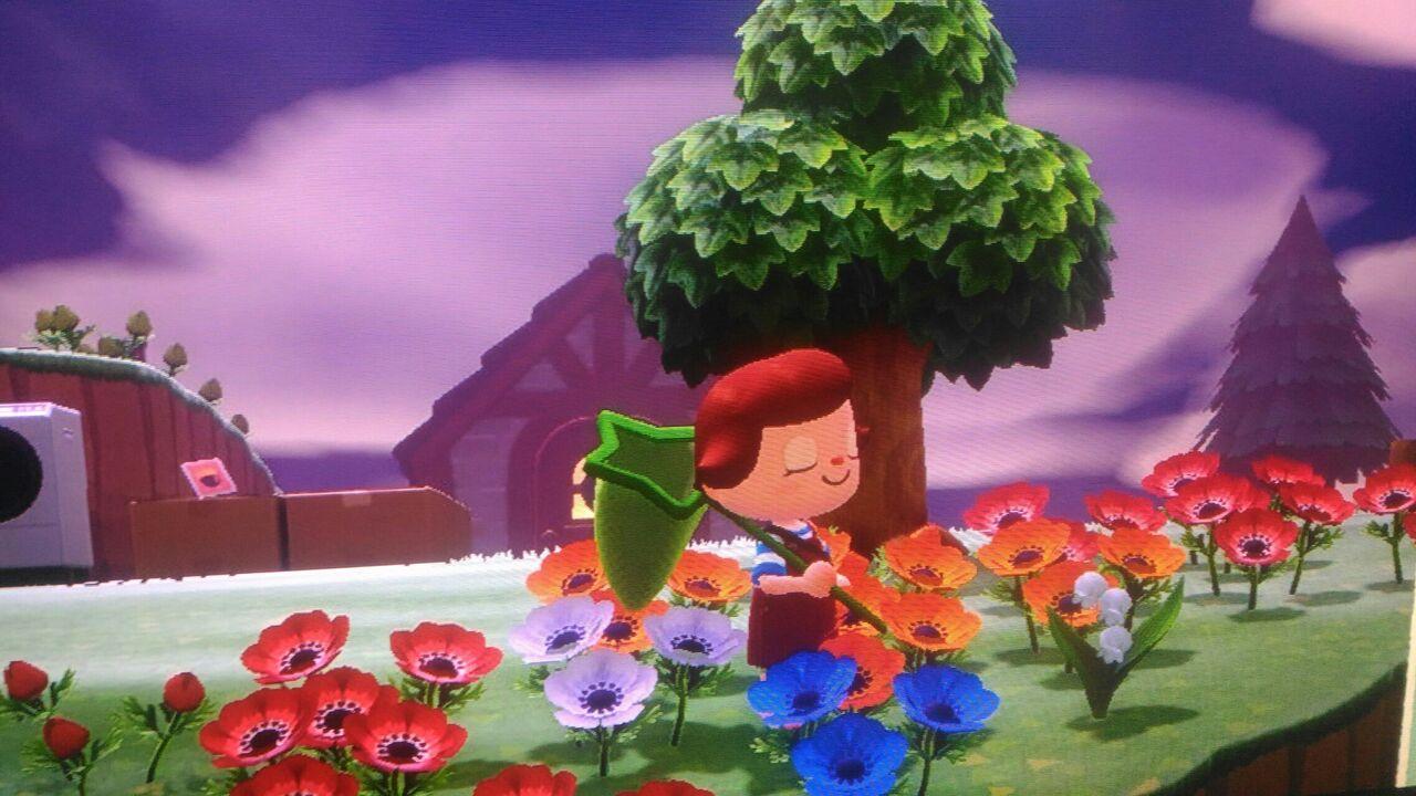 花 枯れる 森 あつ