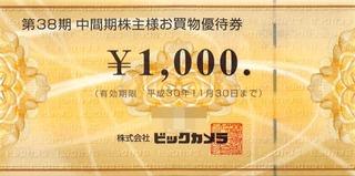 20180515_ビックカメラ株主優待券A