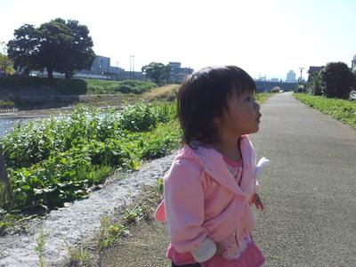 2011-10-20 09.45.14.jpg