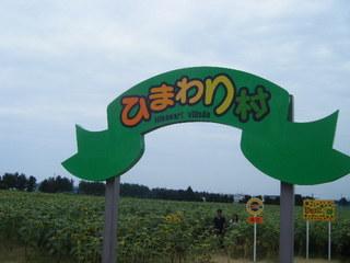2009_0815ひまわり0001