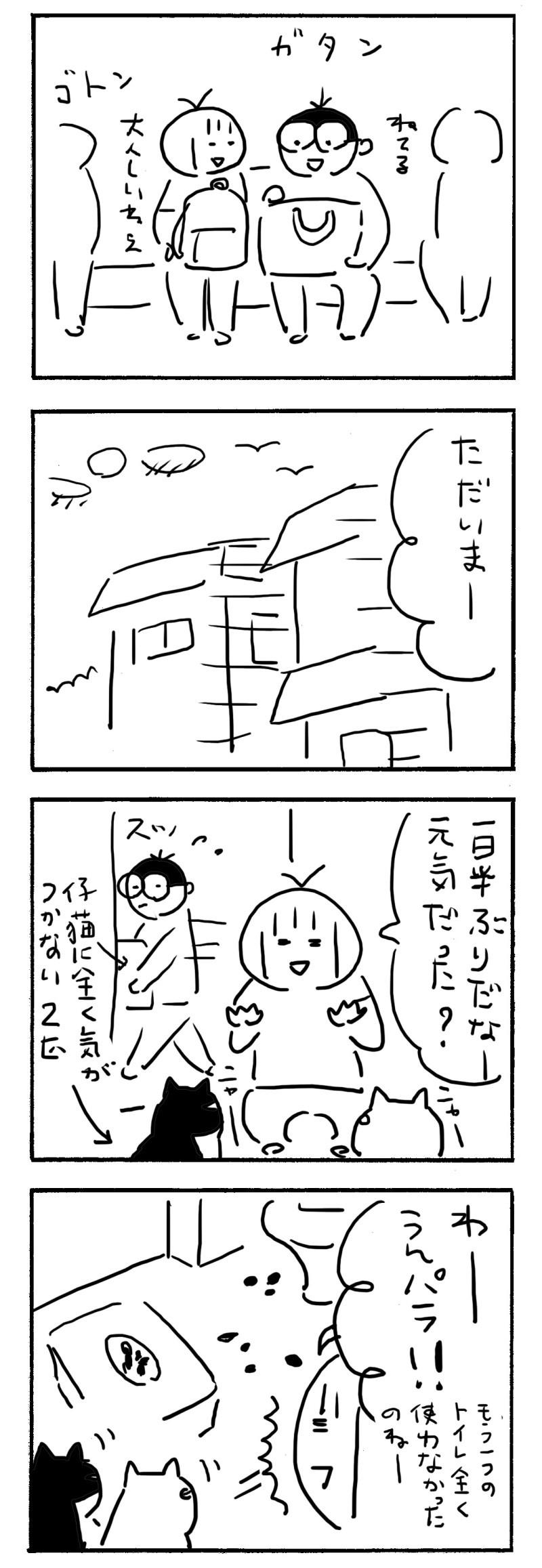 01dd539c.jpg