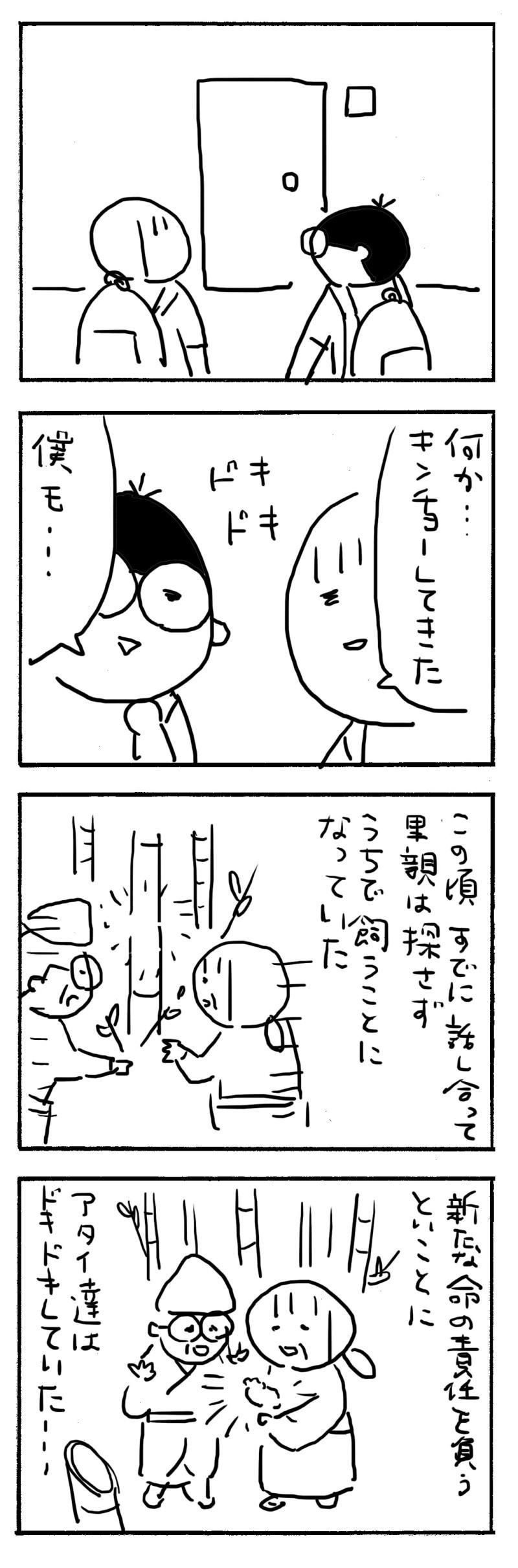 1717cb64.jpg