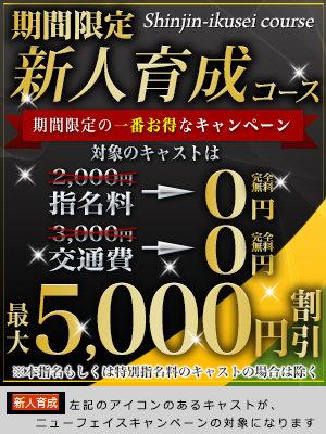 300×400