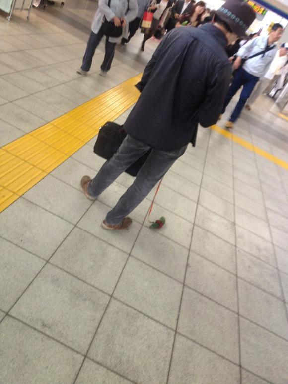 http://livedoor.blogimg.jp/sokudokuex/imgs/2/0/201f7532.jpg