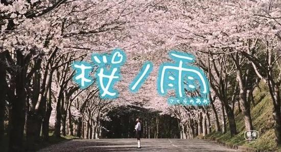 映画『桜ノ雨』予告 _