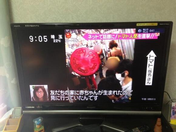 http://livedoor.blogimg.jp/sokudokuex/imgs/a/d/add859fd.jpg