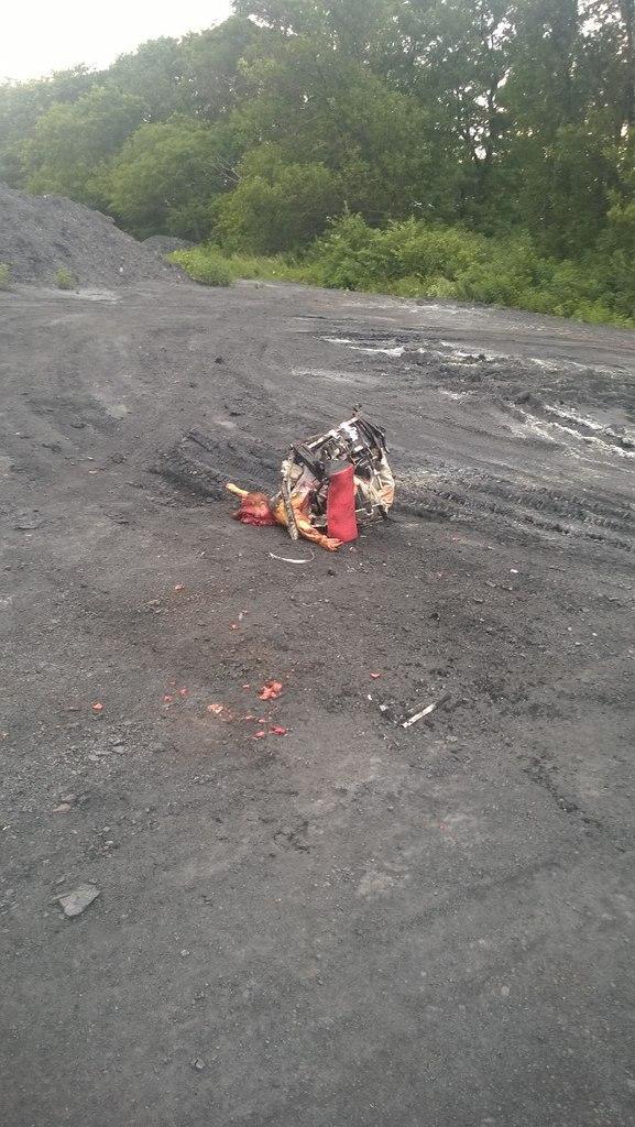 New保守宣言!!【国際】295人搭乗のマレーシア航空機墜落、全員死亡 上空1万m飛行中に撃墜か=ウクライナ東部、ロシア国境付近コメントトラックバック                ko