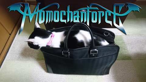momochanforce