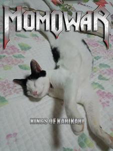 momowar
