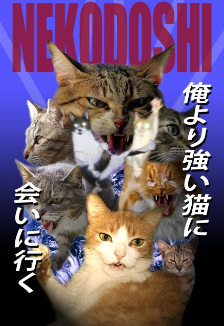 猫年年賀状