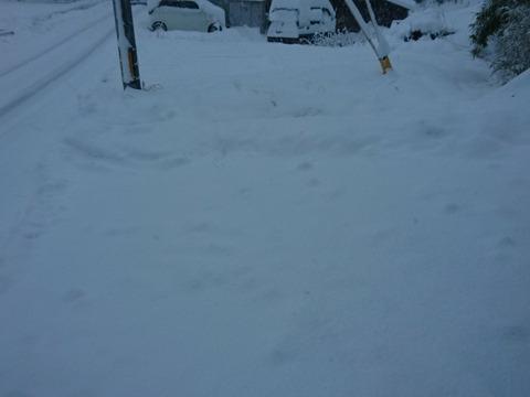 一晩で積もる雪