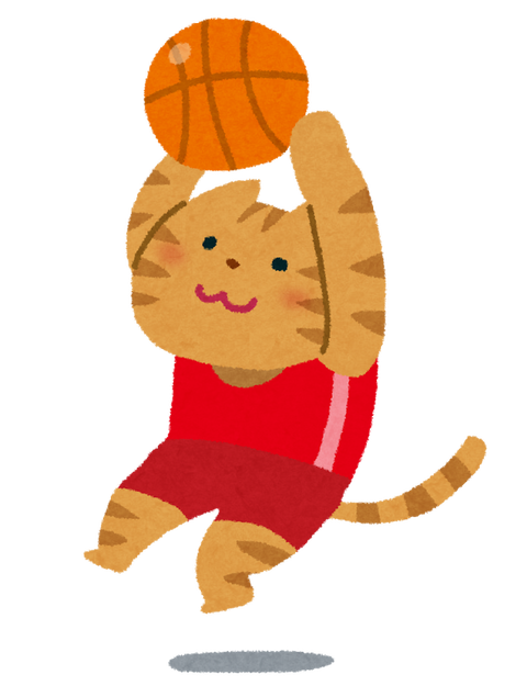 basketball_cat