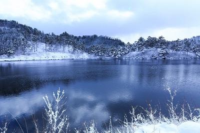 snowlake_002