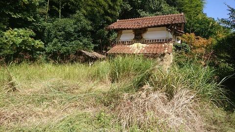 草が生い茂る蔵の前