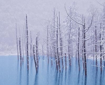 snowlake_001