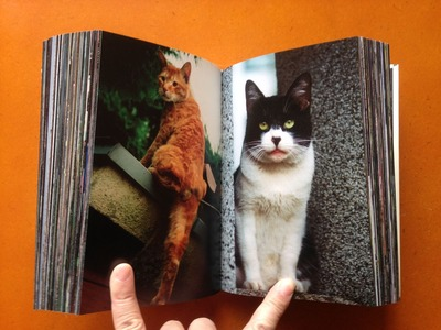 横川辰之写真集『東京ストライプ』4
