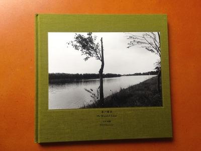 安井直博写真集『木の東京』
