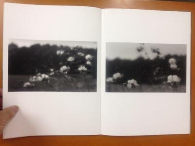 平林達也写真集『白い花』2