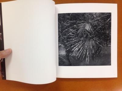 矢内靖史写真集『棕櫚の日曜日』1