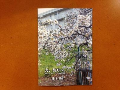 谷口雅彦写真集「光、彼方へ Sakura of 7 minutes」
