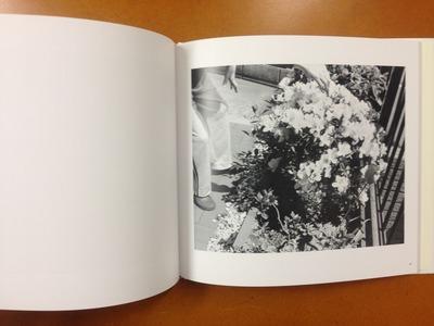内田芳信写真集『海峡の花』4