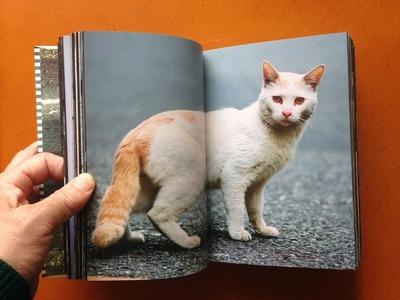横川辰之写真集『東京ストライプ』2