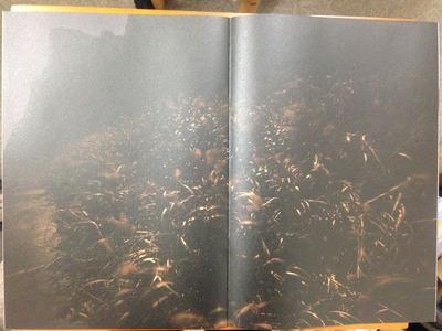 中里和人写真集『龍宮』3