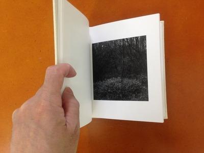 村越としや写真集『木立を抜けて』4
