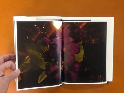 野村佐紀子写真集『Flower』1